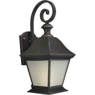 Best Harvin 1-Light Outdoor Wall Lantern By Alcott Hill