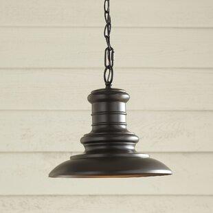 Brayden Studio Colunga 1-Light Outdoor Pendant