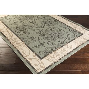 Great choice Pearce Moss/Ivory Indoor/Outdoor Area Rug By Charlton Home