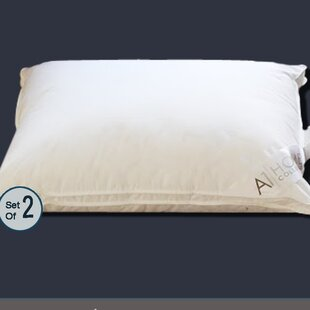 Gusset Polyfill Queen Pillow (Set of 2)