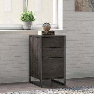 Quiroz 3 Drawer Vertical Filing Cabinet