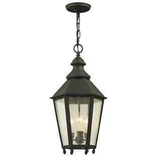 Darby Home Co Aaryahi 3-Light Outdoor Hanging Lantern