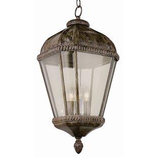 TransGlobe Lighting 4-Light Outdoor Hanging Lantern