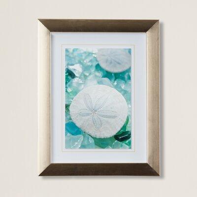 Highland Dunes \'Sea Glass Starfish\' Framed Photographic Print ...
