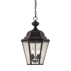Drennen 4-Light Outdoor Hanging Lantern