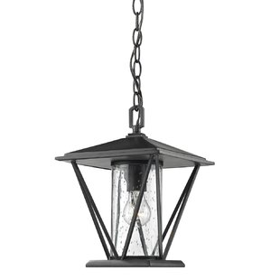Breakwater Bay Nora 1-Light Outdoor Hanging Lantern