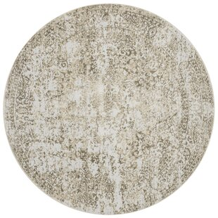 Jensen Champagne/Light Gray Area Rug by Ophelia & Co.