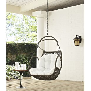 Holladay Swing Chair by Bay Isle Home