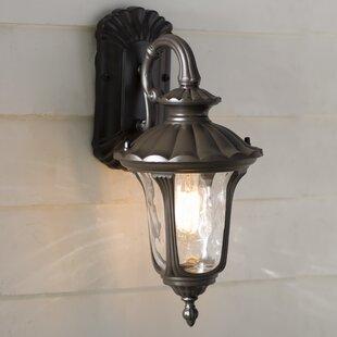 Weisberg 1-Light Outdoor Wall Lantern