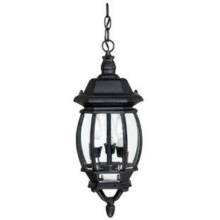Alcott Hill Herkimer 3-Light Outdoor Hanging Lantern