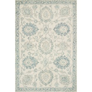 Farmhouse Rustic Blue Area Rugs Birch Lane