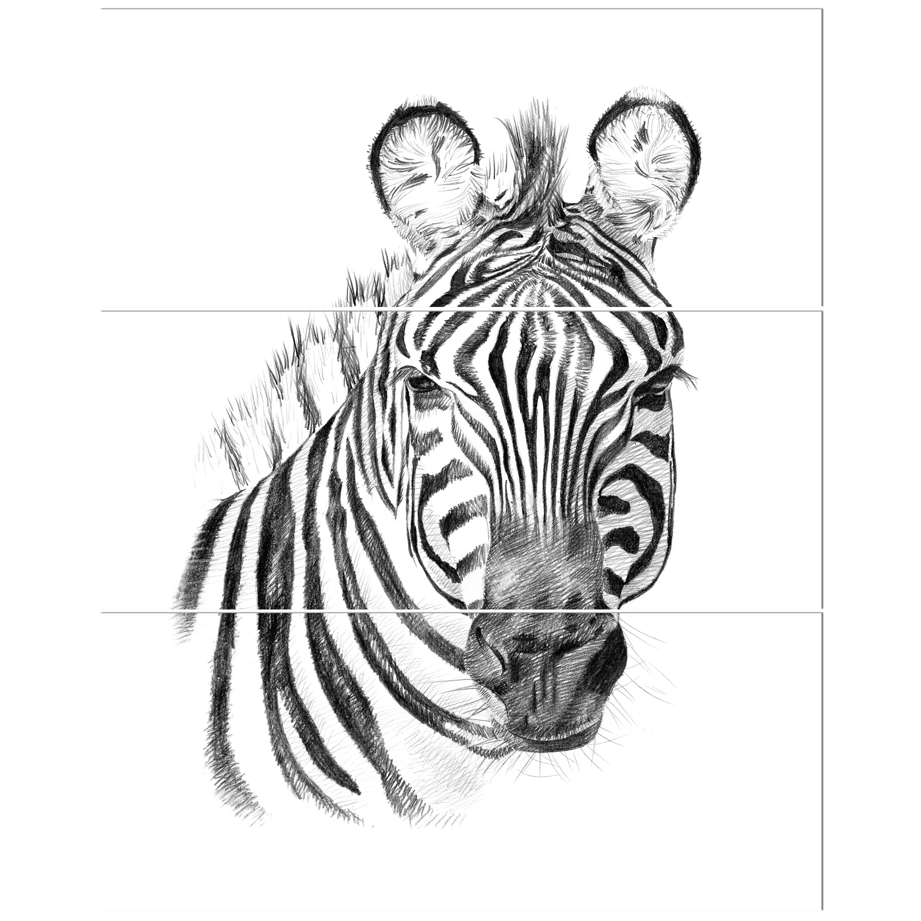 East urban home pencil zebra sketch in black and white oil painting print multi piece image on wrapped canvas wayfair