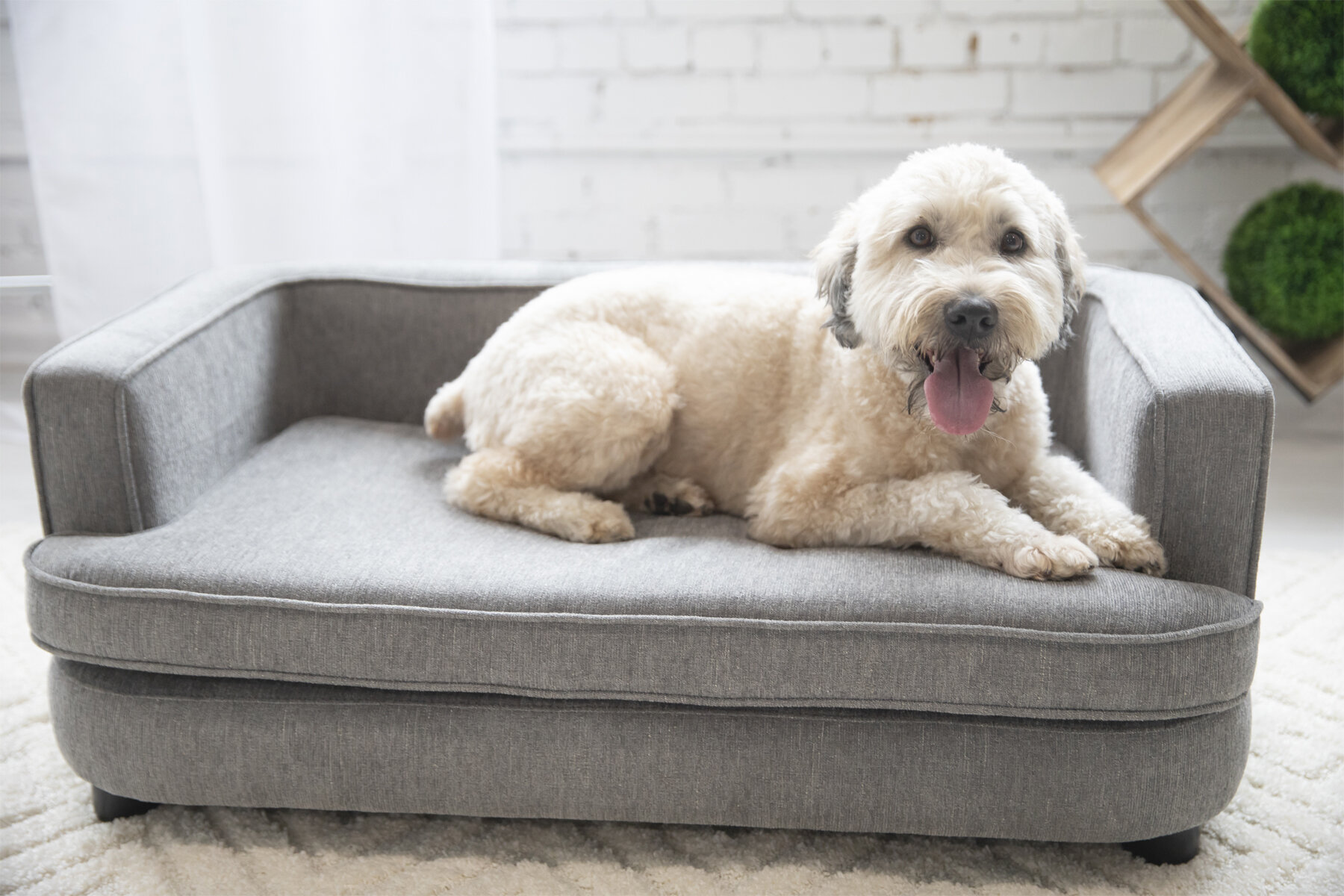 La Z Boy Furniture Bartlett Dog Sofa Bed Reviews Wayfair