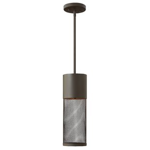 Brayden Studio Proulx 1-Light Outdoor Pendant