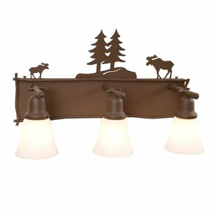 Steel Partners Moose 3-Light Vanity Light