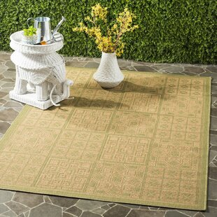 Herefordshire Light Green & Natural Indoor/Outdoor Area Rug