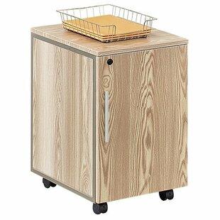 Ebern Designs Gadson 1-Drawer Mobile Vertical Filing Cabinet