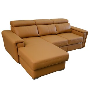 Dotan Leather Sleeper Sectional
