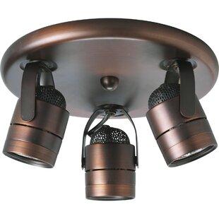 Latitude Run Merlino 3-Light Directional & Spotlight