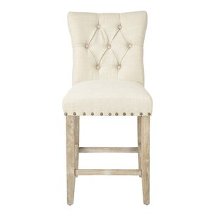 Danna 24 Bar Stool With Cushion (Set of 2) by One Allium Way