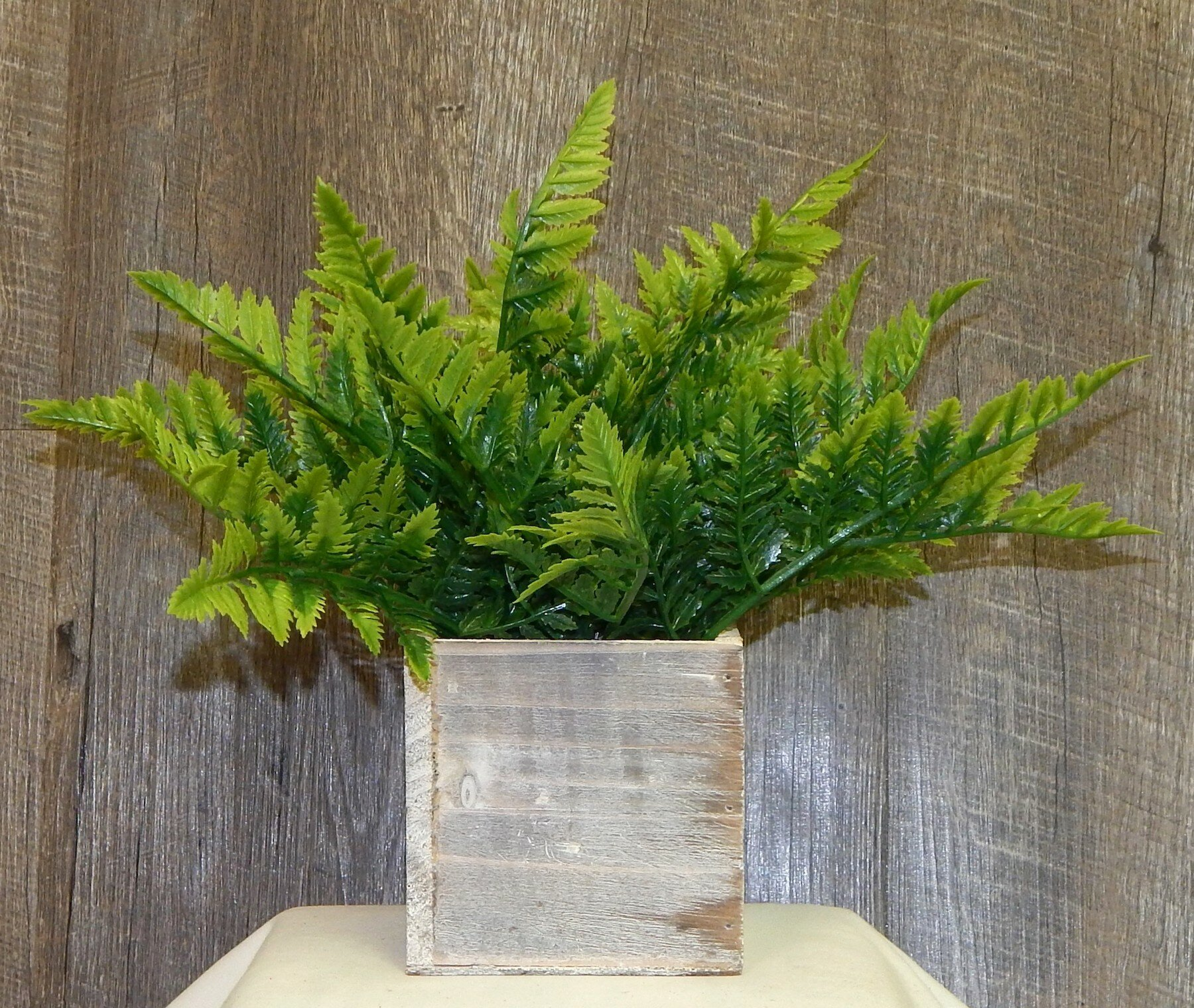 Farmhouse Fern Arrangement Desktop Foliage Plant In Decorative
