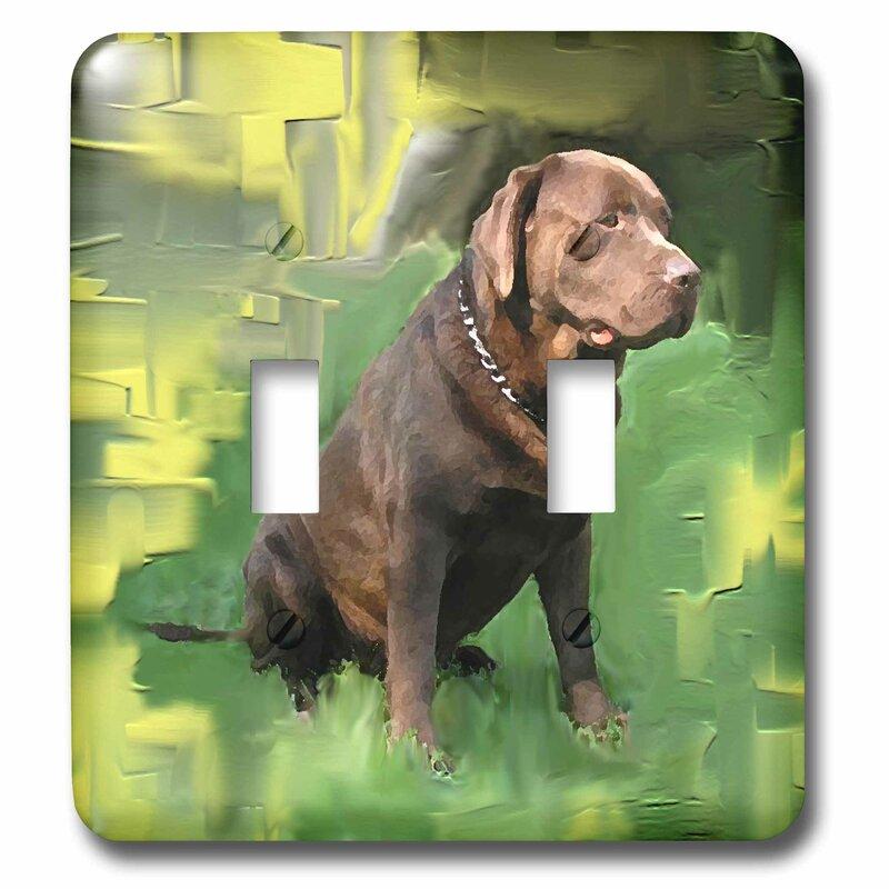 3drose Chocolate Labrador Retriever 2 Gang Toggle Light Switch Wall Plate Wayfair