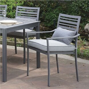 Alvah Patio Dining Chair with Cushion (Set of 2)