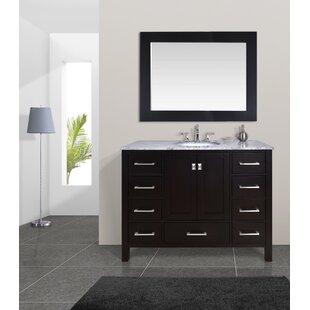 Ankney 48 Single Bathroom Vanity Set with Mirror by Brayden Studio