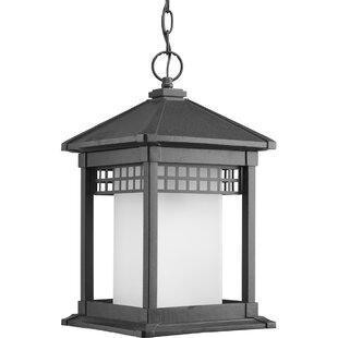 Alcott Hill Triplehorn Contemporary 1-Light Hanging Lantern