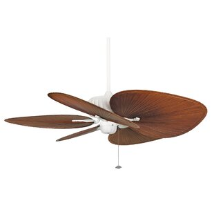 Belleria 5-Blade Ceiling Fan
