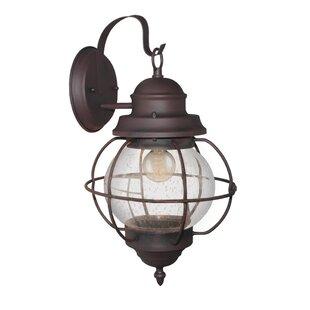 Osborn 1-Light Outdoor Wall Lantern