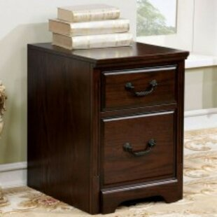 Mcelrath Transitional 2-Drawer Vertical Filing Cabinet by Charlton Home Today Only Sale