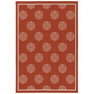 Mikole Tangerine Indoor/Outdoor Area Rug