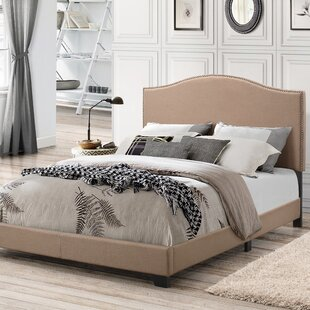 Doty All-In-One Panel Bed by Charlton Home