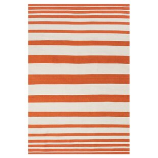Carrizal Indoor/Outdoor Area Rug in Orange