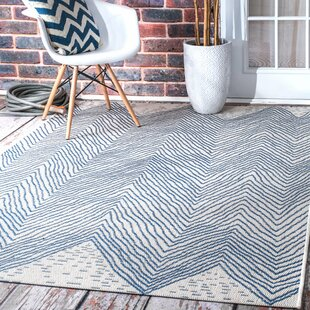Baptist Mills Indoor/Outdoor Area Rug