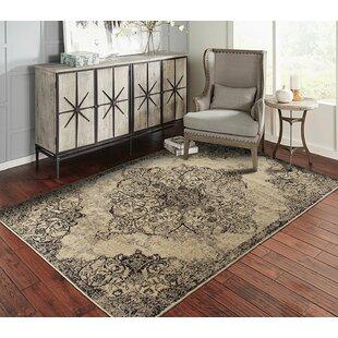 Look for Spivey Black/Beige Indoor/Outdoor Area Rug Great price
