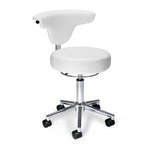 Anatomy Task Chair