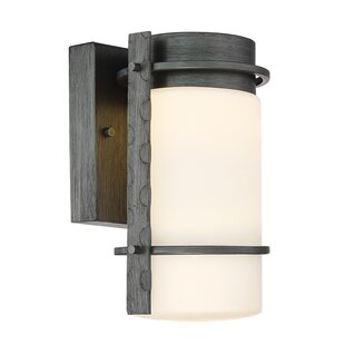 Top Aldridge 1-Light Outdoor Sconce By Designers Fountain