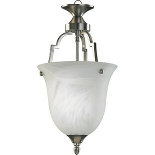Charlton Home Hertz 1-Light Urn Pendant