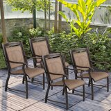 Lucious Stacking Patio Dining Chair (Set of 2) by Fleur De Lis Living
