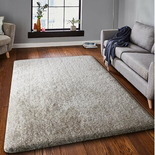 Read Reviews Spicer White Area Rug By Mercer41
