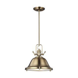 Darby Home Co Chiaramonte 1-Light Dome Pendant
