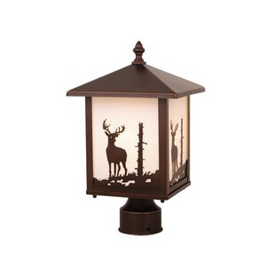 Josefina Deer Outdoor 1-Light Lantern Head