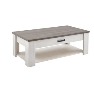 Huntsville Coffee Table With Storage By Brambly Cottage