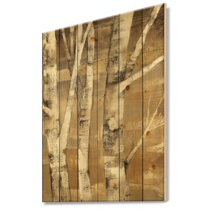 5e2ce20b5481 Natural Birch Poles | Wayfair