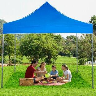 10 Ft. W x 10 Ft. D Steel Pop-Up Canopy by Stalwart