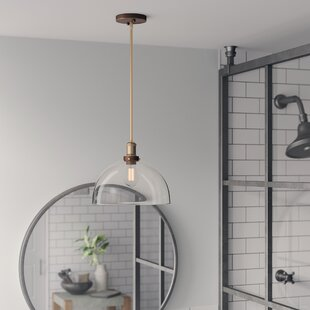 Buy clear Whiddon 1-Light Dome Inverted Pendant By Greyleigh