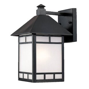 San Pablo Rustic 1-Light Glass Shade Outdoor Wall Lantern