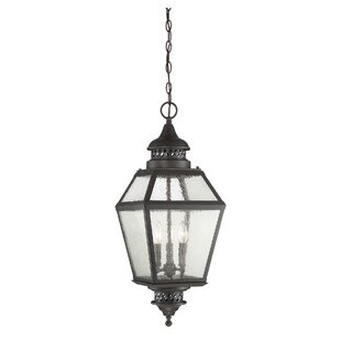 Alcott Hill Harshbarger 3-Light Outdoor Hanging Lantern
